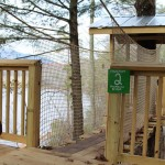 Camp B Treehouse10