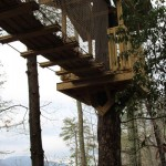 Camp B Treehouse14