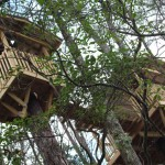 Camp B Treehouse6