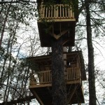 Camp B Treehouse7
